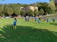 Tournoi Animation juniors F